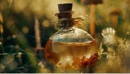 Натуральность парфюмерных ароматов