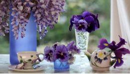 Нежность фиалки в парфюмерных ароматах