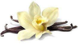 Сладкое очарование ванили
